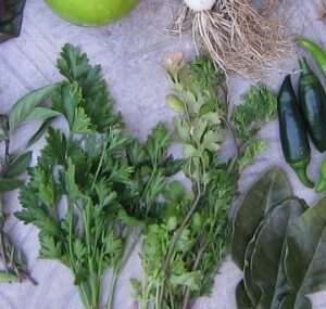 Sunday Morning Harvest From Vegetable Garden